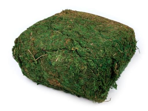 Dekoračný mach 730 g zelená 5sáčok