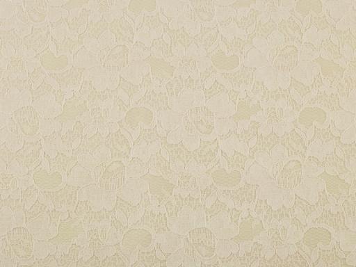 Čipka podložená mikroplyšom krémová sv. 1m
