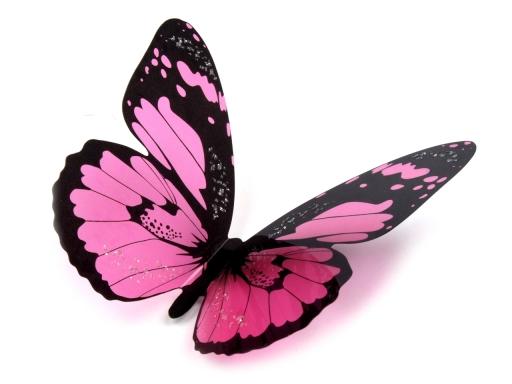 Dekorácia motýľ 3D sada